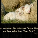 Jesus knows and calls his sheep by name